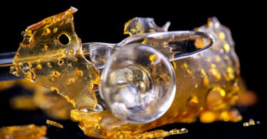 BHO extractions
