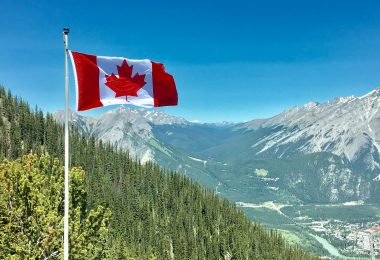 Canadian cannabis stocks