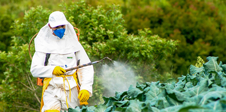 Biopesticides Synthetic Pesticides Alternative Terpenes