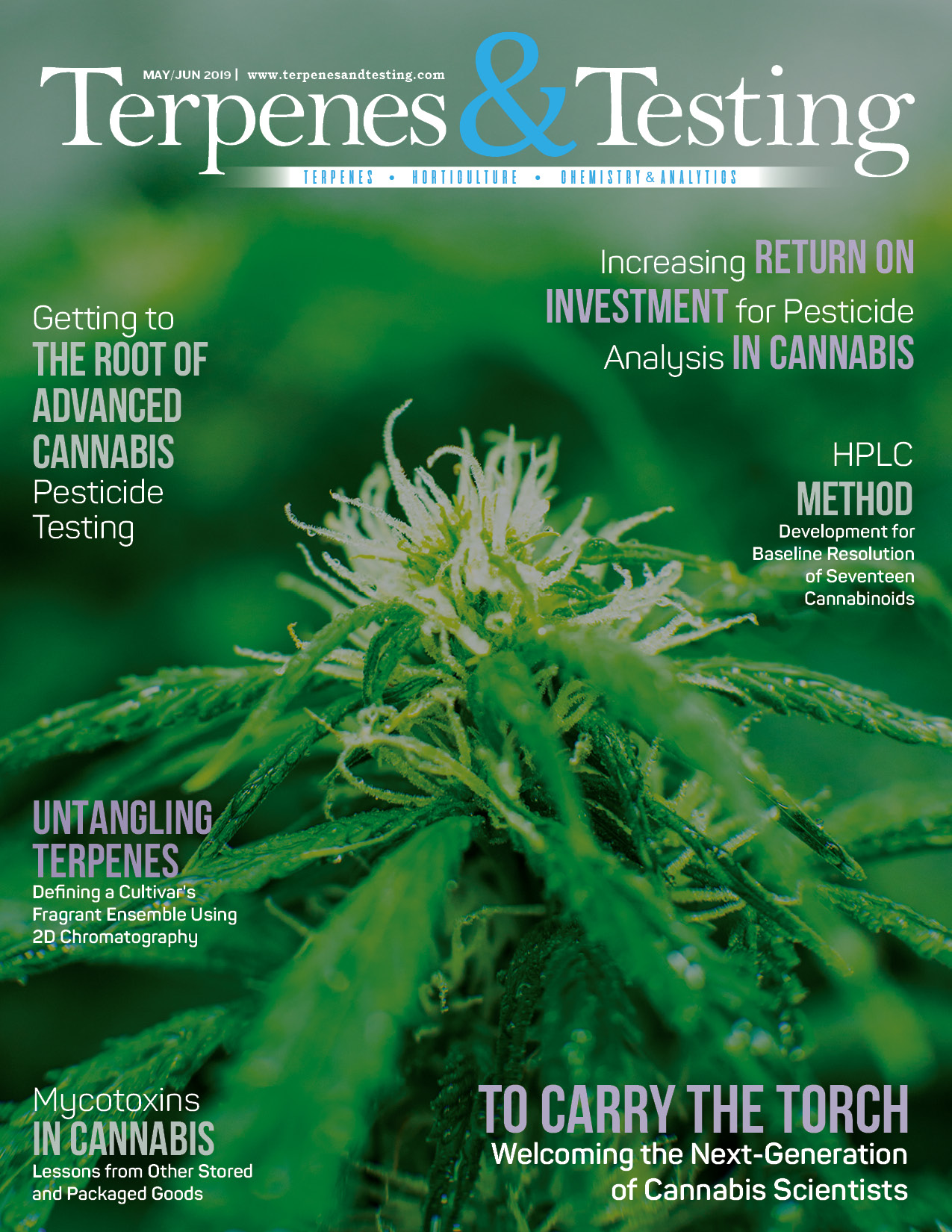 TT-cover-web.jpg