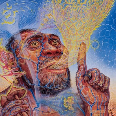 Stoned Apes