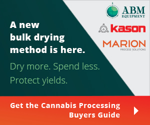 KAS-cannabis-300x250-1.jpg