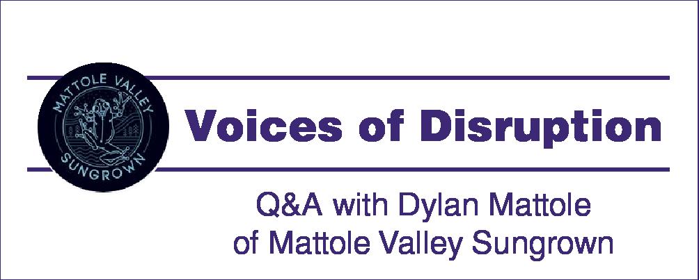 VoiceofDisruption_DYLAN_1000x500-01.png